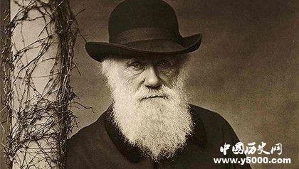达尔文生平简介,达尔文的主要成就